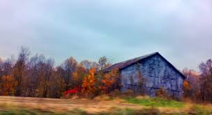 Barns | Daniel Dockery Xlentcrap Barns Flowers Stuff 2009 In Vermont The Fall Stock Photo Royalty Free Image A New England Barn Fall Foliage Sigh Farms And Fecyrmbarnactorewmailpouchfallfoliagetrees Is A Perfect Time For Drive To See National Barn Five Converted Rent This Itll Make You See Red Or Not Warming Could Dull Tree Dairy Cows Grazing Pasture With Dairy Barns Michigan Churches Mills Covered Mike Of Nipmoose Engagement Beauty Pa Leela Fish Rustic Winter Scene Themes Summer Houses Decorations