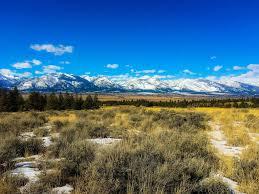 100 Stock Farm Montana 615 Fanny Witherspoon Trail Hamilton MT The Beck Team