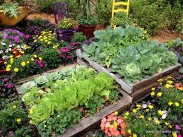10 Beautiful Pallet Garden Ideas