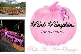Pumpkin Patch Columbus Georgia by Breast Cancer Awareness Pink Pumpkins At Best Nursery Pumpkin