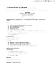 Sample Resume For Job Entry Level Template Good Examples Of