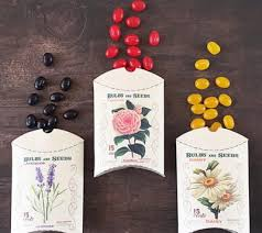 Paper Craft Ideas For Wedding Gifts And Favors Flower Seed Packet DIY Favor Boxes