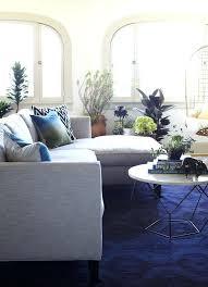 blue rugs for living room peenmedia