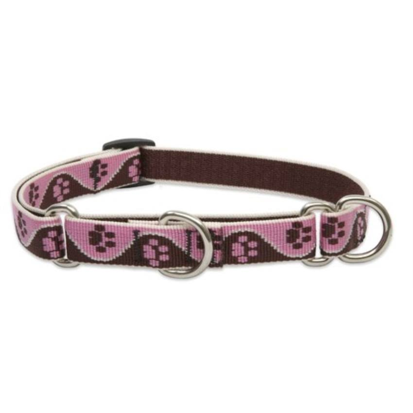 LupineMartingale Combo Dog Collar - Tickled Pink, 3/4x14-20 in