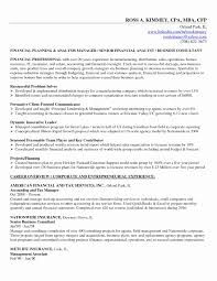 Business Financial Plan Template Best Of Small Association Awesome