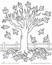 Kindergarten Fall Tree Coloring Pages