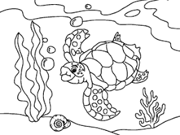 Ocean Animal Coloring Book For Kids Ikidspad SeaanimalColoringPages