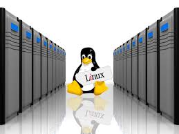 I Will Install Webmin On Linux Server | Linux And Virtual Private ... Vps Hosting Linux Sver Siptellnet Cloud Provider Best Django Which Host Is Right For Your Site Web On A Tight Budget 2017 Who Do We Rank The Highest This Year Websnp Dicated Cloud For It Infrastructure Support Iviry Cara Buat Sendiri Tanpa Hosting Free Sted Komputer Asia Ssd In Hong Kong Singapore Cheap Youtube Part 3 How To Setup And Access The A Bought From Configure Virtualmin On First Login Knowledgebase
