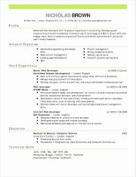 Entry Level Sharepoint Developer Sample Resume Fresh 10 Elegant