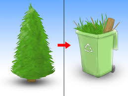 How To Care For A Christmas Tree 12 Steps With Pictures