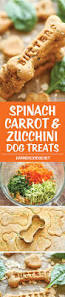Libby Canned Pumpkin For Dogs by 83 Best Treats And Recipes Images On Pinterest Puppy Treats Pet