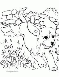Pug Coloring Page Pages Dog Color Printable Breed