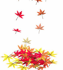 Leaves clipart animated 12
