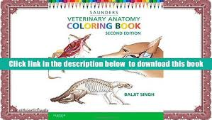 Veterinary Anatomy Colouring Book Pdf Coloring E Saunders Full