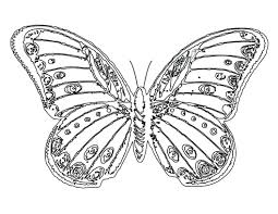 Fresh Coloring Pages Butterflies Design Gallery Ideas Free Page Of A Monarch Butterfly Garden Life Cycle