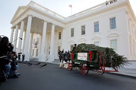 Fraser Fir Christmas Trees North Carolina by First Lady Michelle Obama Receives The 2012 White House Christmas