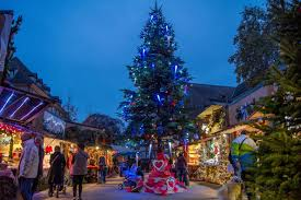What Is The Best Christmas Tree Food by Top Christmas Breaks In France Europe U0027s Best Destinations