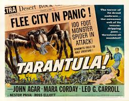 Pumpkin Patch Tarantula Scientific Name by Dr Theda U0027s Crypt Tarantula