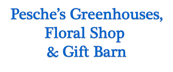 Lake Geneva Florist - Flower Delivery By Pesche's Greenhouses ... Blog Blue Barn Creative Blue Barn Delivery Littlerock Washington By Laurie Delivery Post From May 28th 16 Pics Stories Finds And More Archives Page 2 Of 4 The Yards New Premier Shed Service Yard Fields At Meadows Homes In Allentown Pa Kay Information Skies Storage Buildings Home Facebook Bluebarnjuice Twitter Tips For The Perfect Fniture Pottery Kids Youtube Barn Find Nsu Quickly 50 Cc Moped Scooter Auto Cycle Delivery Sept 17thpics Much