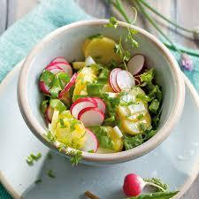 kräuter kartoffelsalat mit radieschen