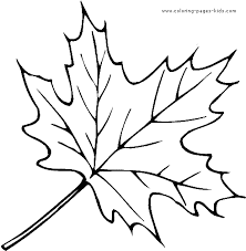 Nature Outlines To Print Leaf Color Page Pages