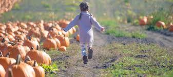 Pumpkin Patch Massachusetts by 5 Best Pumpkin Patches In The Boston Area Mommy Nearest