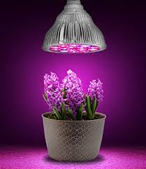 Amazon Hoont™ LED Grow Light Indoor Plant Flowers and