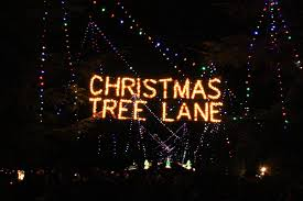 Rather Than Use A Master Switch Or Automated Control Christmas Tree Lane Organizers Prefer To