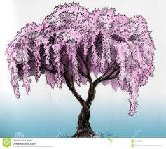 Sakura Tree Pencil Sketch Royalty Free Stock graphy Image Pencil SketchingSketch DrawingPencil DrawingsColoring