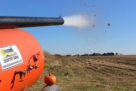 Pumpkin Picking Near Lancaster Pa by Barnyard Kingdom U2014 Country Barn