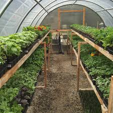 Bufco Organic Vegetable Gardening Services In Toronto