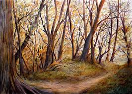 Colour Pencil Sketches Of Nature Woodland Sketch