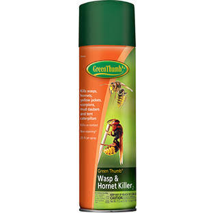 United Industries Corp Green Thumb Wasp & Hornet Killer Spray