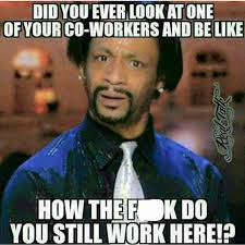 Have I Lol Its Not Even Lunchtime On A Monday And Asked This Of Every God Damn Work Colleague