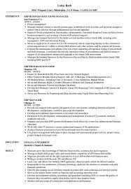 Download ERP Manager Resume Sample As Image File