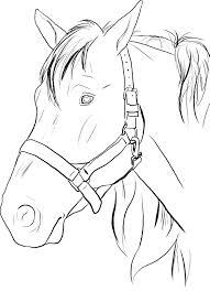 Horse Head To Print
