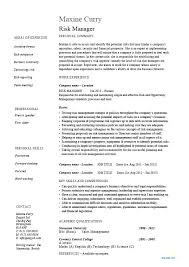 Procurement Manager Resume Sample Category Management Me Examples