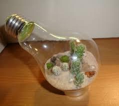 desert terrarium inside a lightbulb