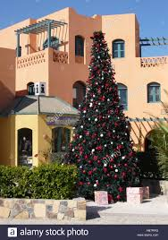 Christmas Tree Lane Altadena Location by Christmas Tree At The Tourist Information In El Gouna Near