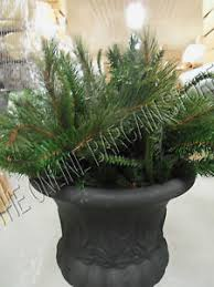 Frontgate Christmas Trees Uk by Frontgate Grandinroad Christmas Urn Filler Greenery Planter