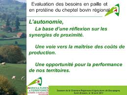 chambre agriculture bourgogne evaluation des besoins en paille et en protéine du cheptel bovin
