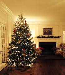 Saran Wrap Xmas Tree by Snow The Sugarlump