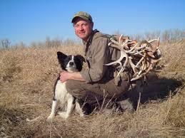 Deer Antler Shed Hunting by Bring Man U0027s Best Friend And Find More Shed Antlers Deer U0026 Deer