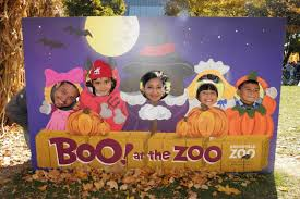 100 Highwood Pumpkin Fest Hours Halloween In Chicago Choose by Halloween Events And Activities For Chicago Kids