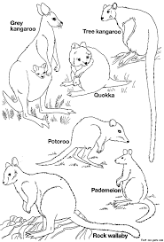 Colouring Pages Australian Christmas Printable Animals Coloring