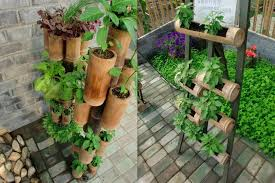 planting bamboo in a pot 10 ways to use bamboo creatively in your garden the end result is