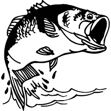 Bass Fish Fishing Colouring Page