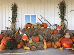 Pumpkin Patch Cincinnati by 11 Best Family Friendly Pumpkin Patches In Cincinnati