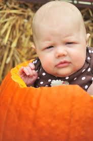 Visalia Pumpkin Patch by Tessa U0027s First Halloween U2013 Domestic Geek