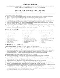Business Systems Analyst Resume Sample Best Objective